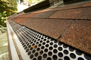 Grid-Like Gutter Guard Placed on The Roof Gully