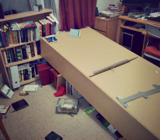 Fallen Bookcase