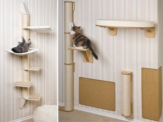 Cats Climbing