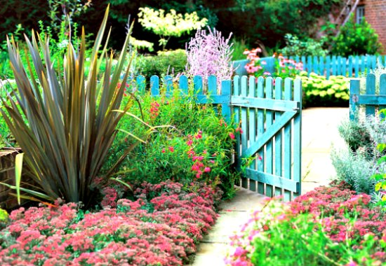 Picket Fence And Garden